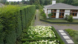 Hagen knippen Prinsenbeek